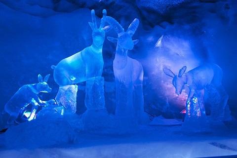 جولة فى القصر الجليدي 1487160253315.jpg