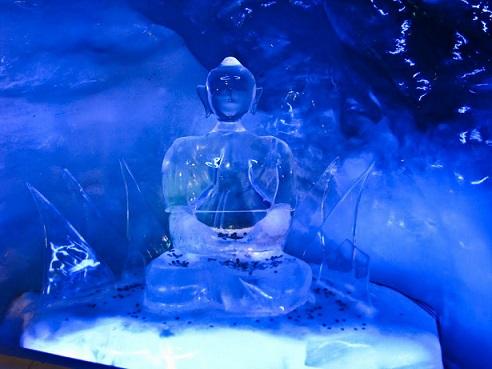 جولة فى القصر الجليدي 148716025334.jpg