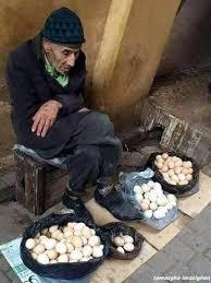 بائع البيض 154985564432.jpg