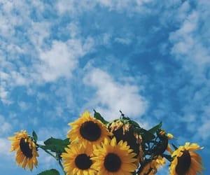 صور فيسبوك ياشبيه الغيم والدنيا مطر 155794284447.jpg